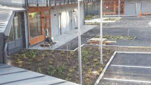 2017-09-26 Planteringar vid vändplan vid Annebodavägen 45 och 47 (hus 5 och 4)